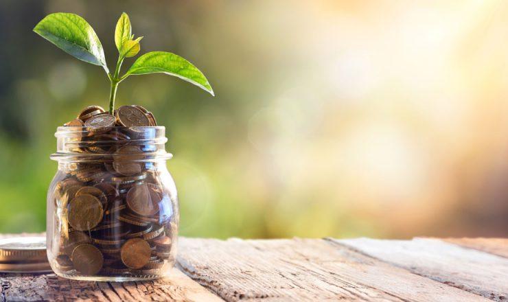 fund_management